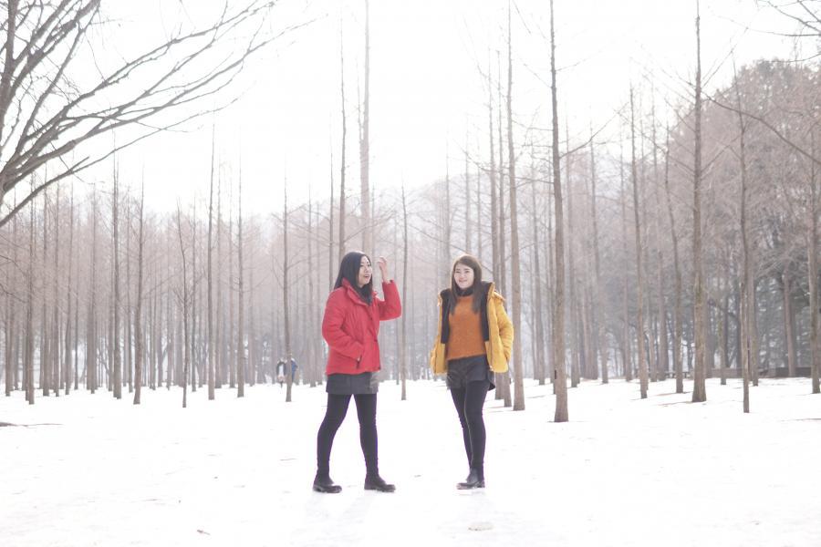 Winter New Year